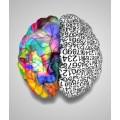 Sosyoloji - Psikoloji